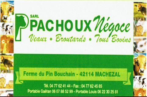 Pachoux